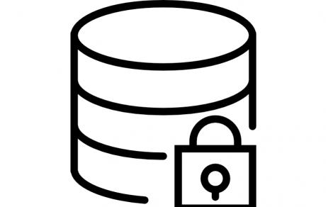 Web data servers